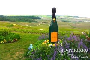 Champagne s1 4